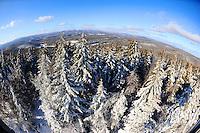 Mt. Olga