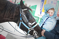 Caterina Miserandino pets a horse at the Quebec Winter Carnival (Carnaval de Quebec) in Quebec city, February 3, 2010. With close to one million participants, it has grown to become the third largest winter celebration in the world.