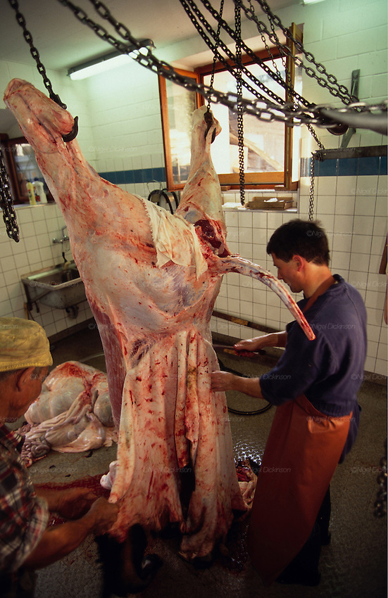Europe, Switzerland, Grisons. Organic prepartion of food. Farmer butchering his own cow..1996.'MEAT' across the World..foto © Nigel Dickinson