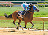 Oh My Dar winning at Delaware Park on 8/22/16