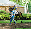 Lil Wayne before The Alec Courtelis Juvenile Arabian Stakes at Delaware Park on 7/9/12