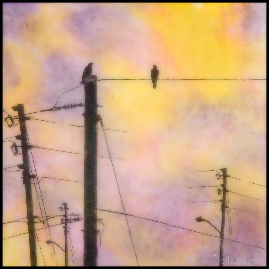 "Encaustic photography mixed media painting of ""communication"" birds on telephone poles in yellow, orange, and purple sunset sky"