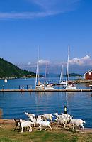Norwegen, Drøbak bei Oslo, Hafen auf der Insel Oscarsborg