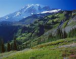 Mount Rainier Natl Park,  WA  <br /> Mount Rainier in morning sun towers Paradise valley from Mazama ridge