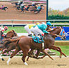 Bold Senator winning at Delaware Park on 10/17/15