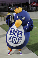 The Ice Box mascot during the Women's Professional Soccer (WPS) All-Star Game at KSU Stadium in Kennesaw, GA, on June 30, 2010.