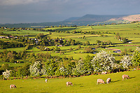 United Kingdom, Wales, Powys, Brecon Beacons National Park, Talybont-on-Usk: View over Usk Valley to Mynydd Llangorse | Grossbritannien, Wales, Powys, Brecon Beacons National Park, Talybont-on-Usk: Blick ueber das Usk Valley nach Mynydd Llangorse