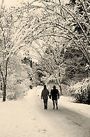 Couple holding hands walking under arbor of snow-covered arching branches on path in Stanley Park, winter, Vancouver, BC.