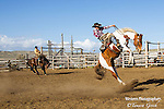 A photo of twp cowboys bucking out a horses. Cowboy Photos, riding,roping,horseback