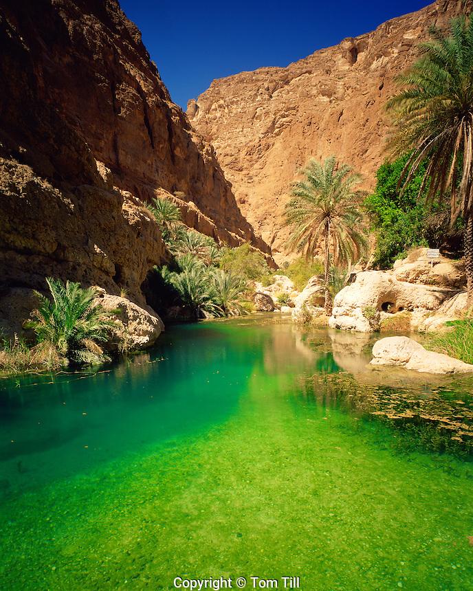Green Pool in Wadi Shab, Sultanate of Oman  Eastern Hagar Mountains  Green color from limestone springs     Arabian Pennisula