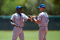 AZL Royals infielders Tyler Tolbert (14) and Bobby Witt Jr. (17) bump gloves during an Arizona League game against the AZL Dodgers Lasorda on July 4, 2019 at Camelback Ranch in Glendale, Arizona. The AZL Royals defeated the AZL Dodgers Lasorda 4-1. (Zachary Lucy/Four Seam Images)