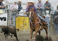 26 Aug 2010:  Shane Erickson scored a time of 15.5 in the slack Tie Down Roping competition at the Kitsap County Stampede Wrangle Million Dollar PRCA Silver Rodeo Tour Bremerton, Washington.