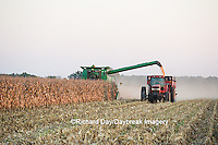 63801-06819 Farmer harvesting corn, Marion Co., IL