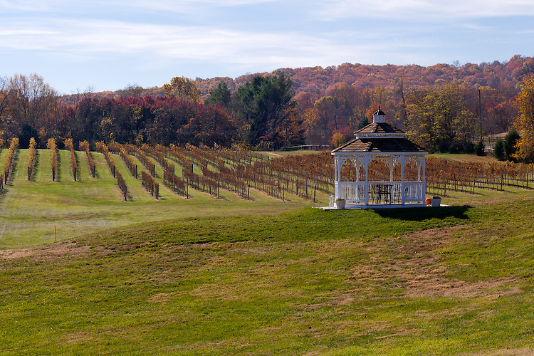 A large gazebo set with table and chairs is set in spacious lawns overlooking Miracle Valley Vineyard.
