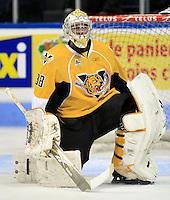 QMJHL - Victoriaville Tigres 2009-2010