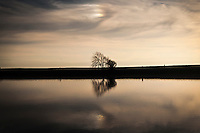 A pair of leafless trees stand in silhouette, reflected in the waters of San Francisco Bay under folds of clouds, waiting for sunset.