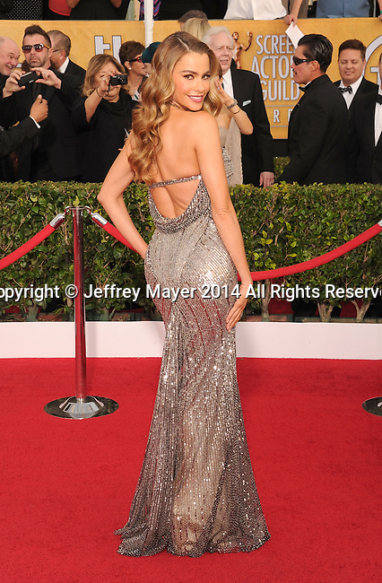 LOS ANGELES, CA- JANUARY 18: Actress Sofia Vergara arrives at the 20th Annual Screen Actors Guild Awards at The Shrine Auditorium on January 18, 2014 in Los Angeles, California.