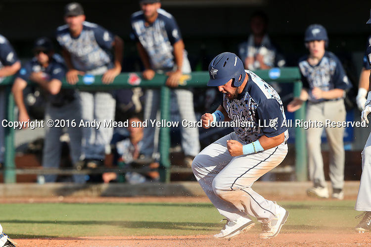 31 May 2016: Nova Southeastern's Brandon Gomez reacts after scoring a run. The Nova Southeastern University Sharks played the Lander University Bearcats in Game 8 of the 2016 NCAA Division II College World Series  at Coleman Field at the USA Baseball National Training Complex in Cary, North Carolina. Nova Southeastern won the game 12-1.