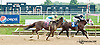 Plumage winning at Delaware Park on 9/12/13