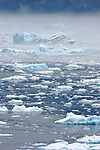 Alaska, Prince William Sound, Columbia Bay, Columbia Glacier icebergs, bergy bits, brash ice, the continuing calving of the glacier fills Columbia Bay in an impassable slurry of ice, in bad weather..