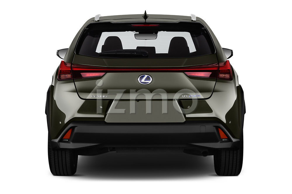 Straight rear view of a 2019 Lexus UX Privilege-Line 5 Door SUV stock images