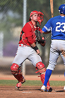 Cincinnati Reds catcher Mitch Trees (33) during an Instructional League game against the Los Angeles Dodgers on October 11, 2014 at Goodyear Training Complex in Goodyear, Arizona.  (Mike Janes/Four Seam Images)