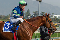 ARCADIA, CA  DECEMBER 26:  #3 Giant Expectations, ridden by Gary Stevens, return to the connections after winning the San Antonio Stakes (Grade ll) on December 26, 2017 at Santa Anita Park in Arcadia, CA. (Photo by Casey Phillips/ Eclipse Sportswire/ Getty Images)