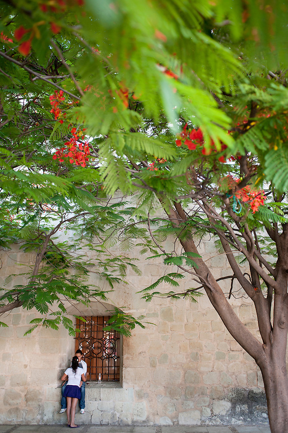 A pair of students steal a quite romantic moment under the shade of the Flambouyant tree in the Plaza Santo Domingo. Oaxaca City, Oaxaca, Mexico