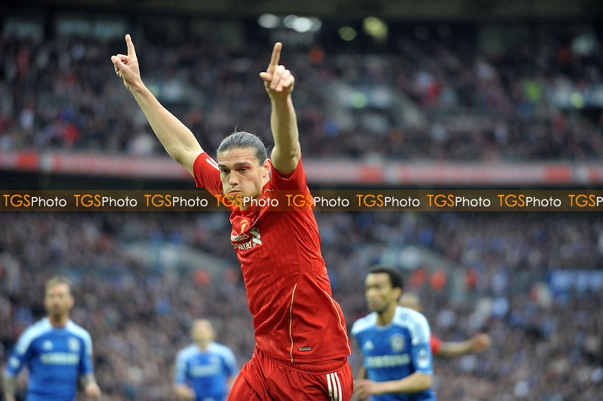 Andy Carroll of Liverpool celebrates but his goal didn't count - Chelsea vs Liverpool - FA Challenge Cup Final at Wembley Stadium, London - 05/05/2012 - MANDATORY CREDIT: Martin Dalton/TGSPHOTO - Self billing applies where appropriate - 0845 094 6026 - contact@tgsphoto.co.uk - NO UNPAID USE.