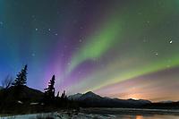 Aurora borealis, Koyukuk river, Brooks mountain range, Arctic, Alaska.