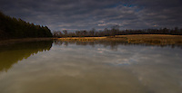 Storm clouds reflect in the tan, muddy waters of a small pond at a nature preserve after a heavy rain.