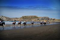 160312 Castlepoint Races