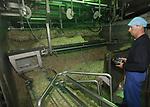 Foto: VidiPhoto<br /> <br /> OOSTERHOUT &ndash;Evers Specials in Oosterhout bij Nijmegen, is de grootste productent van taug&eacute; en andere kiemgroenten in Europa. Taug&eacute; wordt van mungboon tot oogstbare groente opgekweekt op het bedrijf zelf en wordt jaarrond geleverd door heel Europa. Van boon tot oogstbaar product duurt zeven dagen bij een hoge temperatuur en vochtigheidsgraad. Taug&eacute; zit boordevol plantaardige eiwitten, vitaminen en mineralen.
