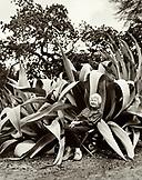 USA, California, woman sitting by agave plants (B&W)