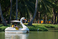 Tourists in swan pedal boat in Bangkok Lumpini park, Thailand