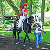 She Kant Miss in The International Ladies FEGENTRI  race at Delaware Park on 6/13/16