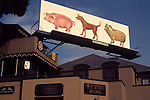 Billboard for Pink Floyd  record Animals on the Sunset Strip in Los Angeles, CA