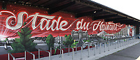 20190623 - VALENCIENNES , FRANCE : illustration picture shows waal paintings in the Stade du Hainaut  pictured during the female soccer game between England – the Lionesses - and Cameroon – Indomitable Lionesses - , a knock out game in the round of 16 during the FIFA Women's  World Championship in France 2019, Sunday 23 th June 2019 at the Stade du Hainaut Stadium in Valenciennes , France .  PHOTO SPORTPIX.BE | DIRK VUYLSTEKE