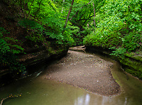 LaSalle Canyon iin summer is filled with it's creek bed and lucious green foliage in summer, Starved Rock State Park, LaSalle County, Illinois