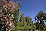 Golan Heights, the garden at Katzrin Archaeological Park.
