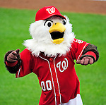 6 June 2010: Washington Nationals' Mascot Screech entertains the crowd during a game against the Cincinnati Reds at Nationals Park in Washington, DC. The Reds edged out the Nationals 5-4 in a ten inning game. Mandatory Credit: Ed Wolfstein Photo