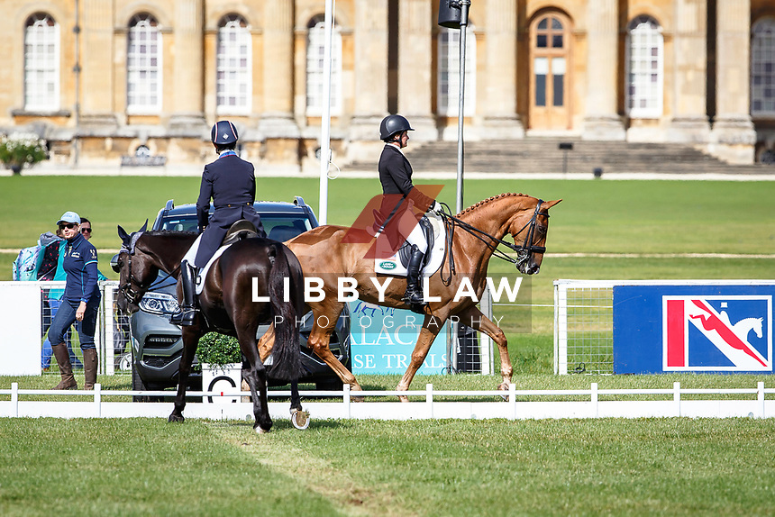 USA-Kimberly Severson rides Cooley Cross Border during the CCI3* Dressage. Interim-3rd. With USA-Hannah Sue Burnett coming in for her test on RF Demeter. 2017 GBR-SsangYong Blenheim Palace International Horse Trial. Thursday 14 September. Copyright Photo: Libby Law Photography