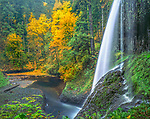 Silver Falls State Park, OR<br /> A side view of Middle North Falls (106 ft) in Silver Creek Canyon in fall