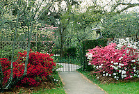 Entrance gate to Brookgreen Gardens in Savannah Georgia with bloomin Azaleas and budding trees