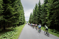 peloton through the highest forests in Belgium; the Hautes Fagnes<br /> <br /> Ster ZLM Tour (2.1)<br /> Stage 4: Hotel Verviers &gt; La Gileppe (Jalhay)(190km)