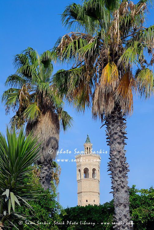 Tunisia, Mahdia, minaret of mosque in between palm trees, blue sky