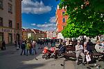 Wrocławski rynek.