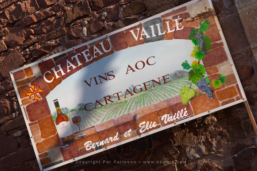Chateau Vaille vins AOC Cartagene. Bernard and Elie Vaille. Languedoc. France. Europe.
