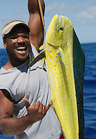 QW0585-D. Dolphinfish (Coryphaena hippurus) caught by fisherman. Dominica, Caribbean Sea.<br /> Photo Copyright &copy; Brandon Cole. All rights reserved worldwide.  www.brandoncole.com