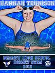 Bryant High School Senior Swim Team Posters - 2019